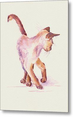 All Legs And Mischief Metal Print by Debra Hall