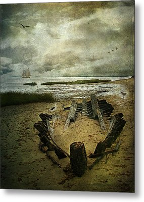 All That Remains Metal Print by Lianne Schneider