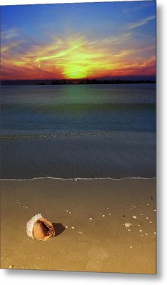 All Washed Up Metal Print by Regina  Williams