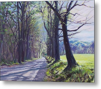 Alleghany Spring Metal Print by Bonnie Mason