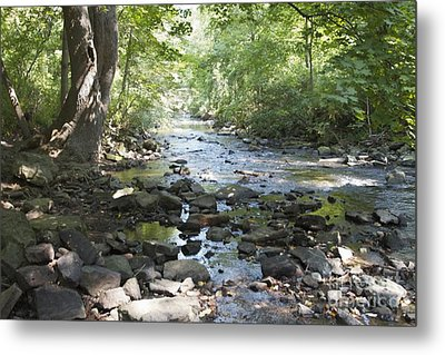 Metal Print featuring the photograph Allen Creek by William Norton