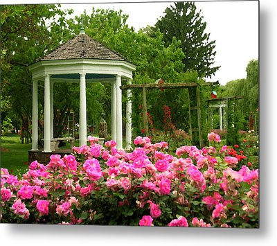 Allentown Pa Gross Memorial Rose Gardens Metal Print by Jacqueline M Lewis