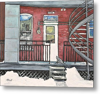 Alley Cat In Verdun Metal Print by Reb Frost