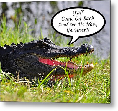 Alligator Yall Come Back Card Metal Print by Al Powell Photography USA