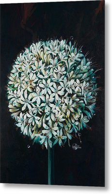 Allium Metal Print by Lynette Yencho