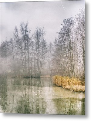 Metal Print featuring the photograph Almost Frozen Almost Winter by Maciej Markiewicz