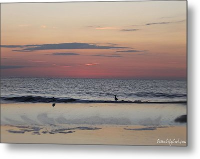 Metal Print featuring the photograph Almost Sunrise by Robert Banach