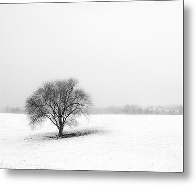 Alone Metal Print by Don Spenner