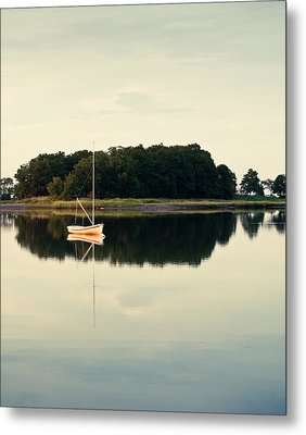 Alone Metal Print by Lee Costa