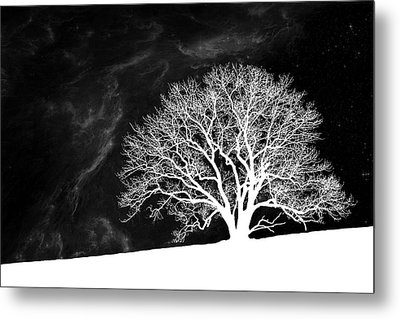 Alone On A Hill Metal Print