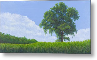 Alone Summer Metal Print by Garry McMichael