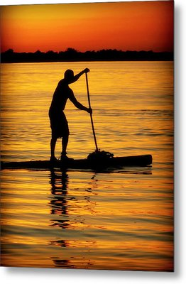 Alone With The Sun Metal Print by Karen Wiles