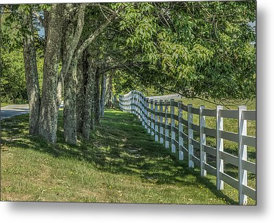 Metal Print featuring the photograph Along A Country Road by Jane Luxton