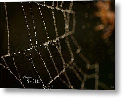 Along Came A Spider Metal Print by Lisa Knechtel