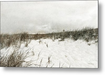 Along The Cape Cod National Seashore Metal Print by Michelle Wiarda