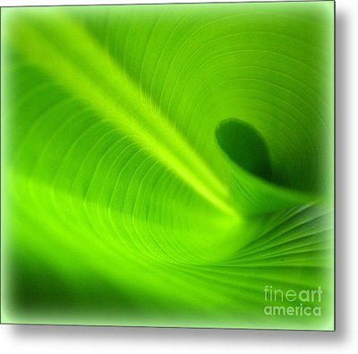 Along The Curve Metal Print by C Ray  Roth