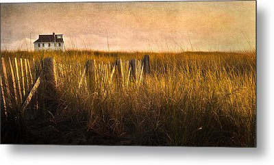 Along The Fence Metal Print by Bill Wakeley