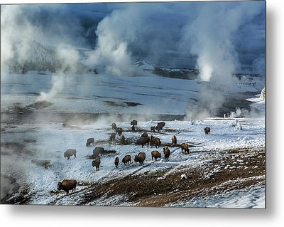 Along The Firehole River In The Upper Metal Print by Michael Nichols