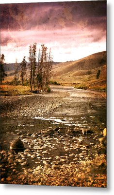 Along The Larmar River 2 Metal Print by Marty Koch