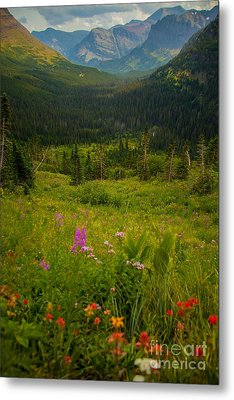 Along The Path To Iceburg Lake 17 Metal Print by Natural Focal Point Photography