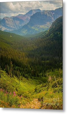 Along The Path To Iceburg Lake 19 Metal Print by Natural Focal Point Photography