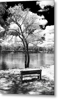 Along The River Metal Print by John Rizzuto