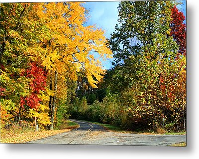 Metal Print featuring the photograph Along The Road 2 by Kathryn Meyer