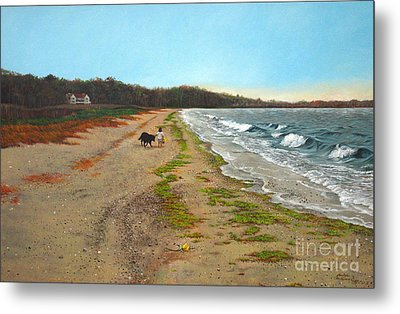 Along The Shore In Hyde Hole Beach Rhode Island Metal Print by Christopher Shellhammer