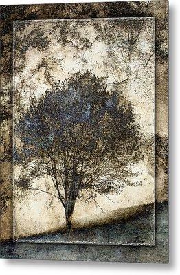 Along The Yachats River Road Metal Print by Carol Leigh