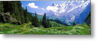 Alpine Scene Near Murren Switzerland Metal Print by Panoramic Images
