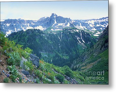 Alpine Vista Near Durango Metal Print