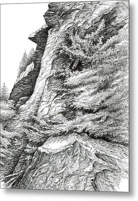Alum Bluff Trail Crag Metal Print by Bob  George