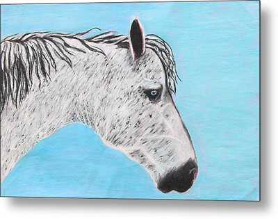 Metal Print featuring the painting Alvaro Stallion by Jeanne Fischer