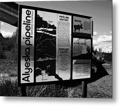 Alyeska Pipeline Metal Print by Juergen Weiss