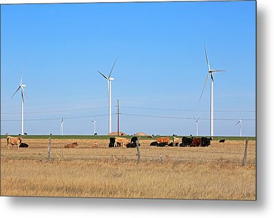 Amarillo By Morning Metal Print