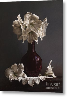 Amaryllis  Metal Print by Larry Preston
