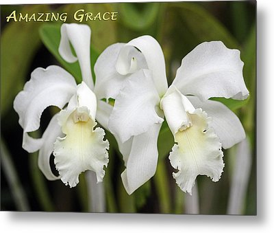 Amazing Grace Metal Print by Dawn Currie