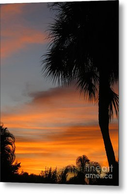 Amazing Sunrise In Florida Metal Print