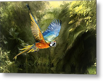 Metal Print featuring the photograph Amazon Beauty by Brian Tarr