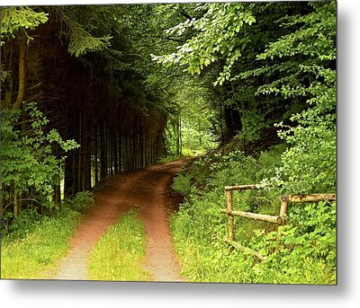 Ambler's Way Metal Print by Marty  Cobcroft