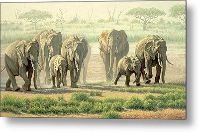 Amboseli Promenade Metal Print by Paul Krapf
