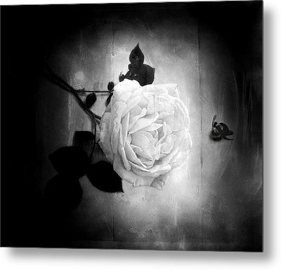 Ambridge English Rose Metal Print