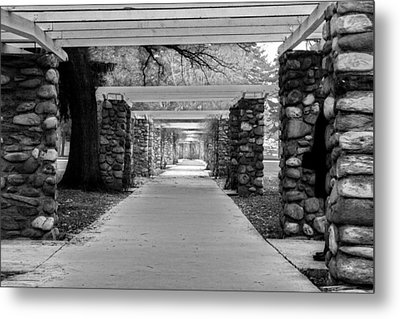 Ambuscade Along The Trellis Path Metal Print