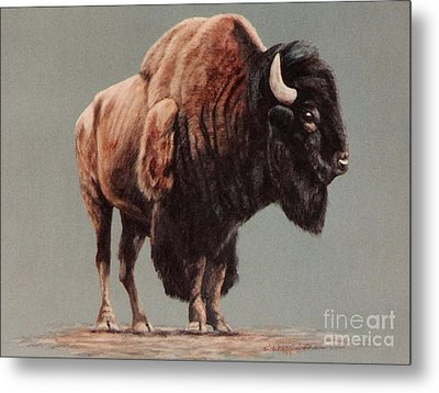 Metal Print featuring the painting American Bison by DiDi Higginbotham