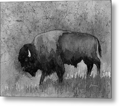 Monochrome American Buffalo 3  Metal Print by Hailey E Herrera