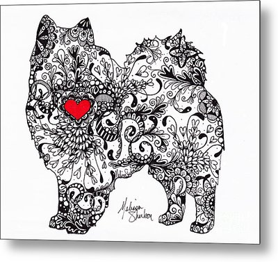 Metal Print featuring the drawing American Eskimo by Melissa Sherbon