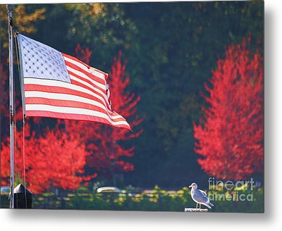 American Fall Day Metal Print by Ronnie Glover