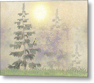 American Goldfinch Morning Mist  Metal Print