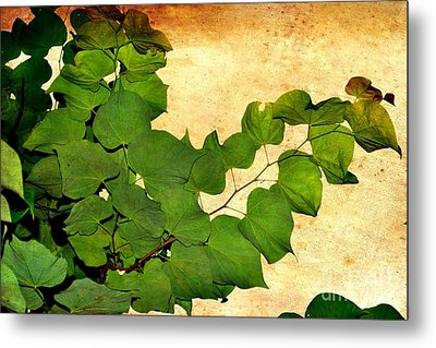 Metal Print featuring the photograph American Redbud by Denise Tomasura