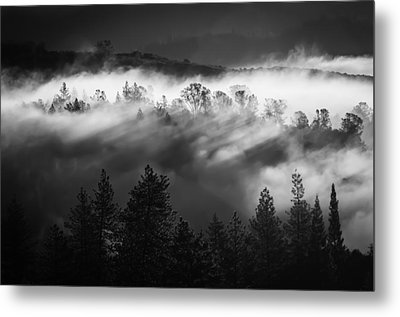 American River Canyon Metal Print by Sherri Meyer